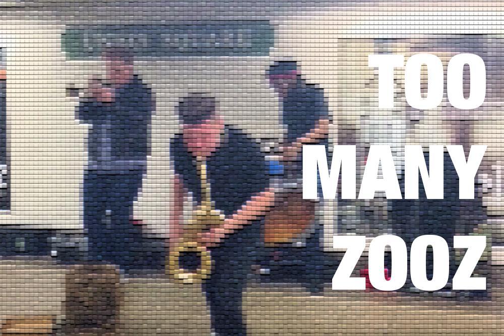 too-many-zooz